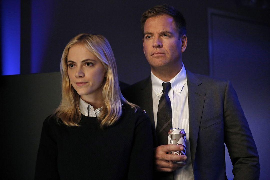 Ein neuer Fall wartet auf Ellie (Emily Wickersham, l.) und DiNozzo (Michael Weatherly, r.) ... - Bildquelle: CBS Television