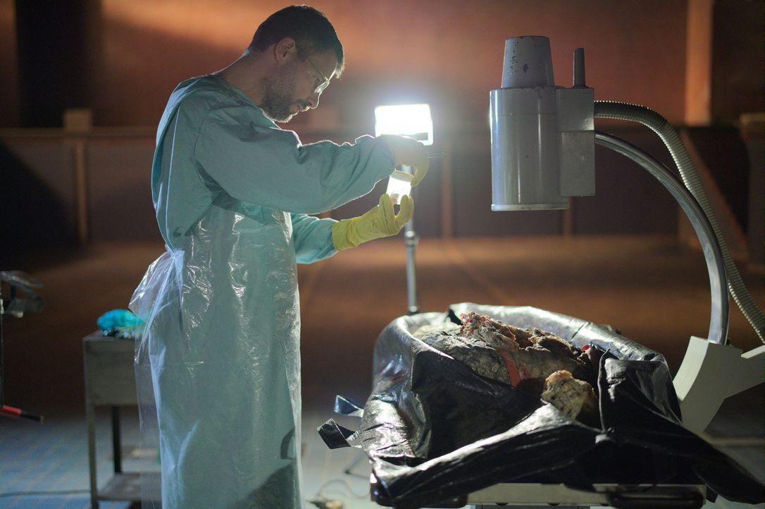 Kann Rechtsmediziner Dr. Fred Abel (Tim Bergmann) den Mord der zersetzten Leichen, die in Kalkfässern gefunden wurden, aufklären? - Bildquelle: Sonja Rom Sat.1/Sonja Rom