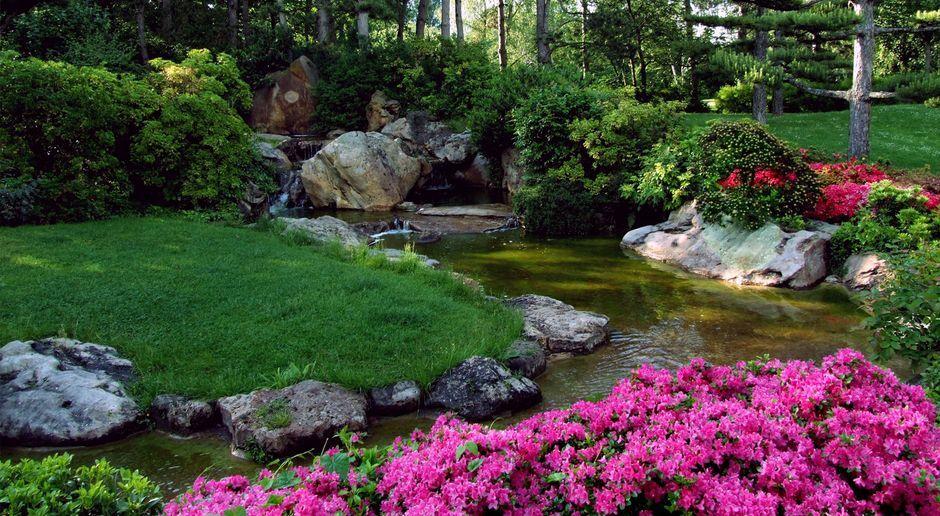 Japanischer Garten Sat1 Ratgeber