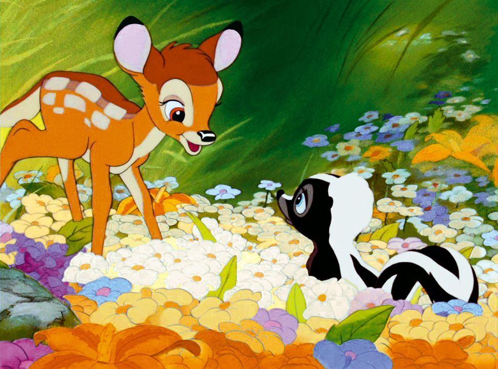 Gute Freunde: Bambi (l.) und Blume (r.) ... - Bildquelle: Disney