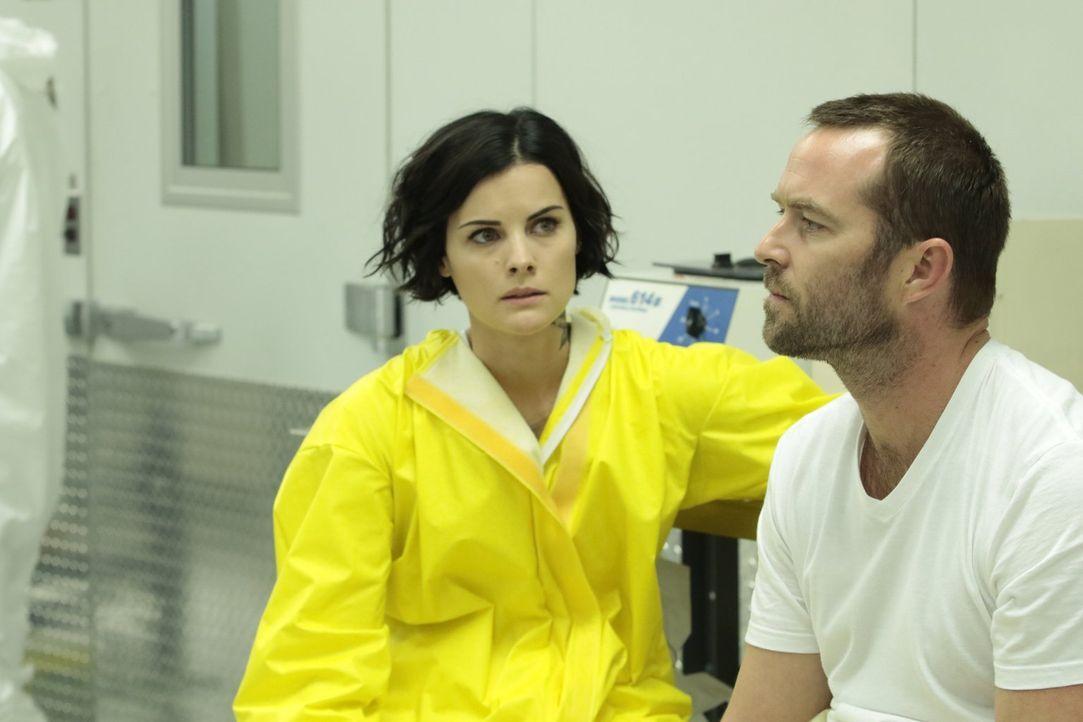 Bei den Ermittlungen kommen sich Jane (Jaimie Alexander, l.) und Weller (Sullivan Stapleton, r.) etwas näher ... - Bildquelle: Warner Brothers