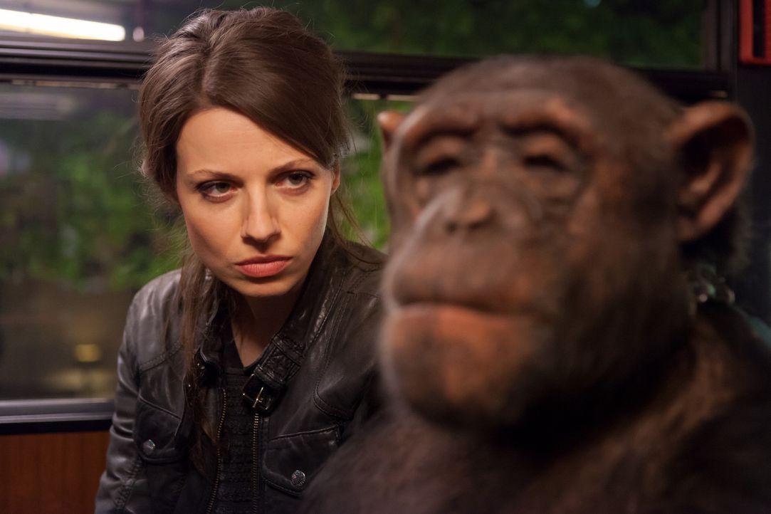 Unter Alkohol im vertraulichen Gespräch mit einem Affen, der ihr einen fatalen Rat gibt: Frieda (Julia Hartmann) ... - Bildquelle: Conny Klein SAT.1