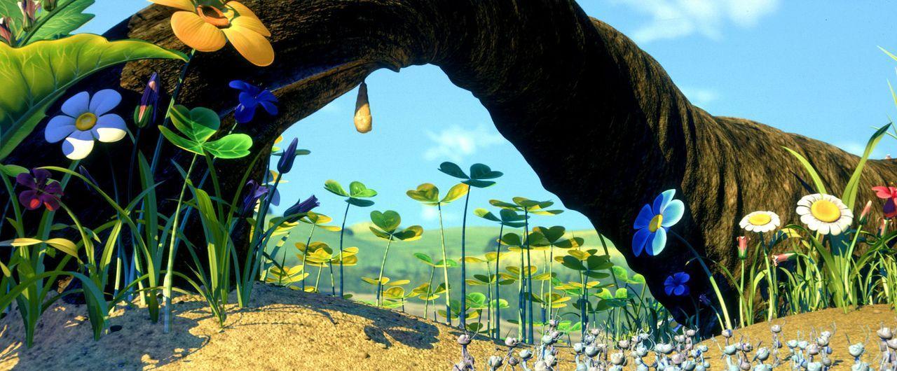 Das Leben auf der Ameiseninsel könnte so schön und idyllisch sein ... - Bildquelle: Disney/Pixar