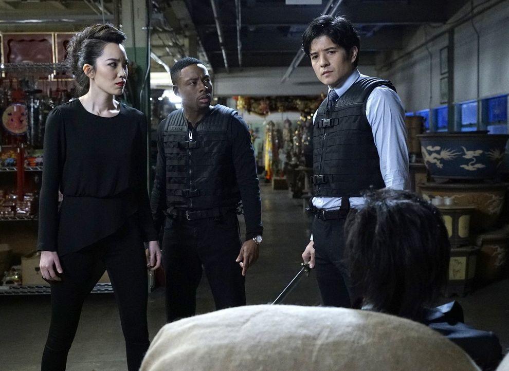 Um die Quantou zu stoppen und herauszufinden, auf welcher Seite Lees Schwester Kim (Jessika Van, l.) steht, geben Lee (Jon Foo, r.) und Carter (Just... - Bildquelle: Warner Brothers