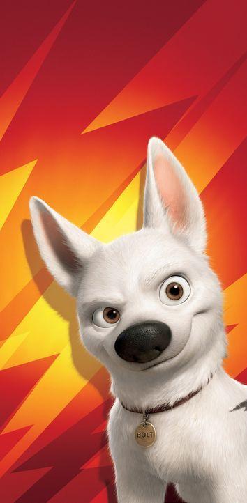 Er ist ein Hund für alle Fälle: Bolt - Bildquelle: Disney Enterprises, Inc.  All rights reserved