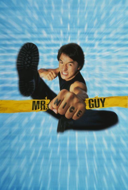 Mr. Nice Guy - Artwork - Bildquelle: Warner Bros.