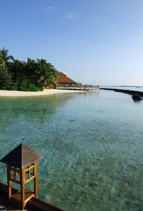 Flitterwochen-Malediven-AFP - Bildquelle: AFP