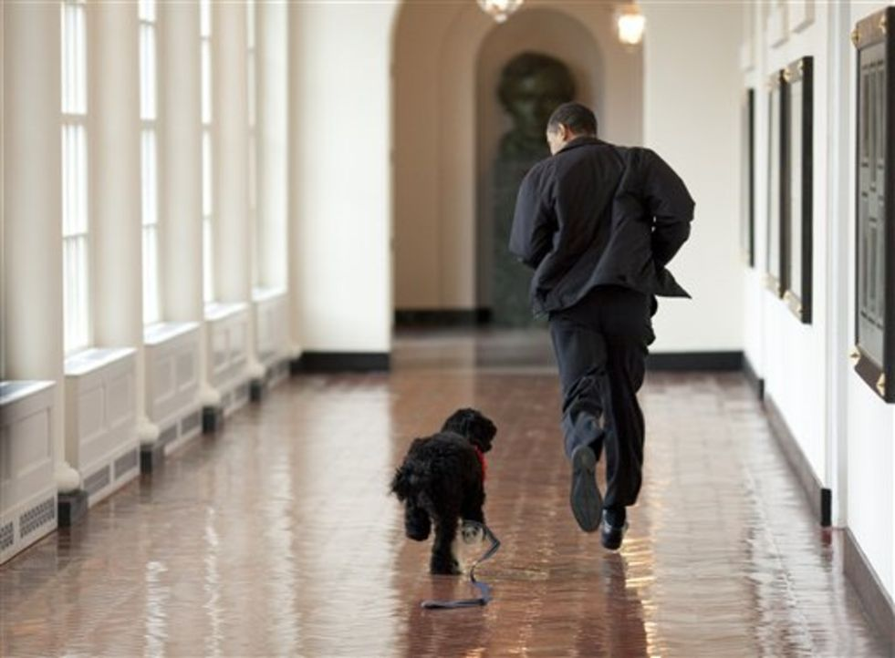 Ein Kamerateam von National Geographic hat den US-Präsidenten fünf Monate lang begleitet. Von der Hektik des täglichen Geschäfts bis zum Spazier... - Bildquelle: Pete Souza National Geographic Television International