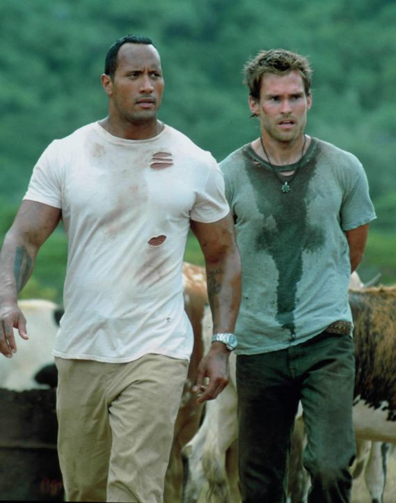 Um aus dem Geschäft aussteigen zu können, muss Kopfgeldjäger Beck (Dwayne Johnson, l.) Travis (Seann William Scott, r.), den Sohn eines Gangsterb... - Bildquelle: 2004 Sony Pictures Television International. All Rights Reserved.