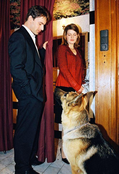 Rex hat die Vereinsmanagerin Lisa Altmann (Birge Schade, r.) hinter einem Vorhang entdeckt. Kommissar Brandtner (Gedeon Burkhard, l.) bittet die Ehe... - Bildquelle: Ali Schafler Sat.1
