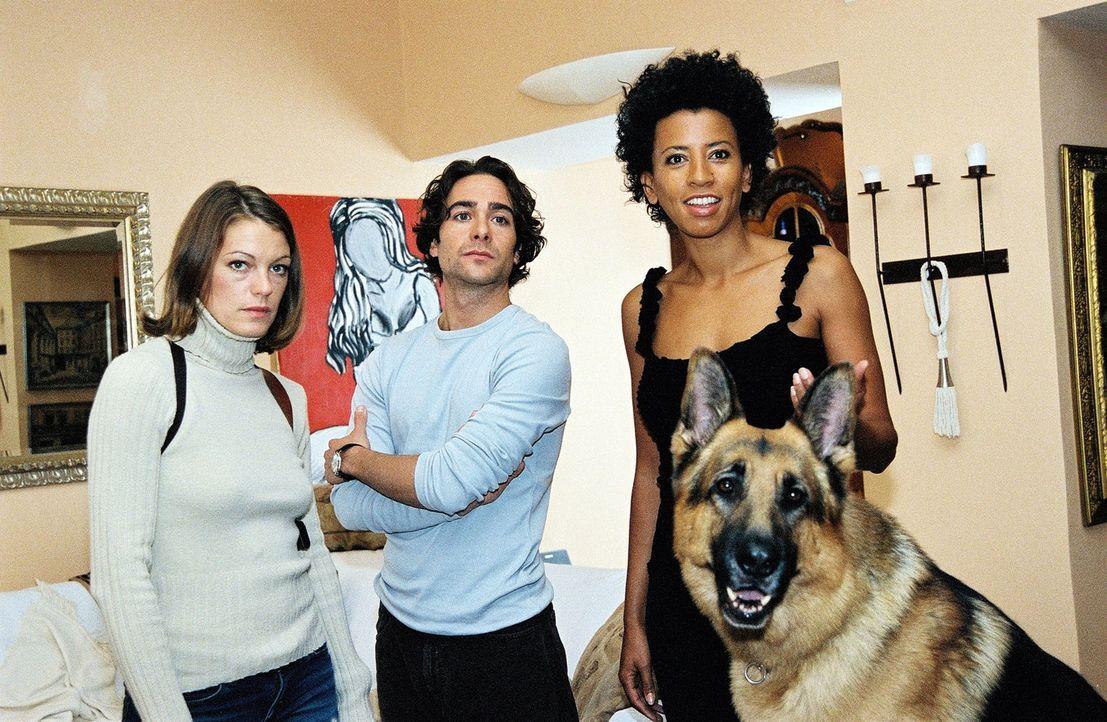 Niki (Elke Winkens, l.), Marc (Alexander Pschill, M.) und Rex besuchen die Radiomoderatorin Nina (Arabella Kiesbauer, r.) in ihrer Wohnung. - Bildquelle: Sat.1