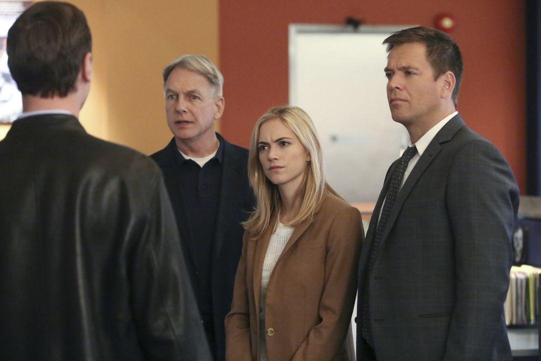 Als ein Soldat ermordet wird, müssen Gibbs (Mark Harmon, 2.v.l.), McGee (Sean Murray, l.), Bishop (Emily Wickersham, 2.v.r.) und Tony (Michael Weath... - Bildquelle: Patrick McElhenney CBS Television