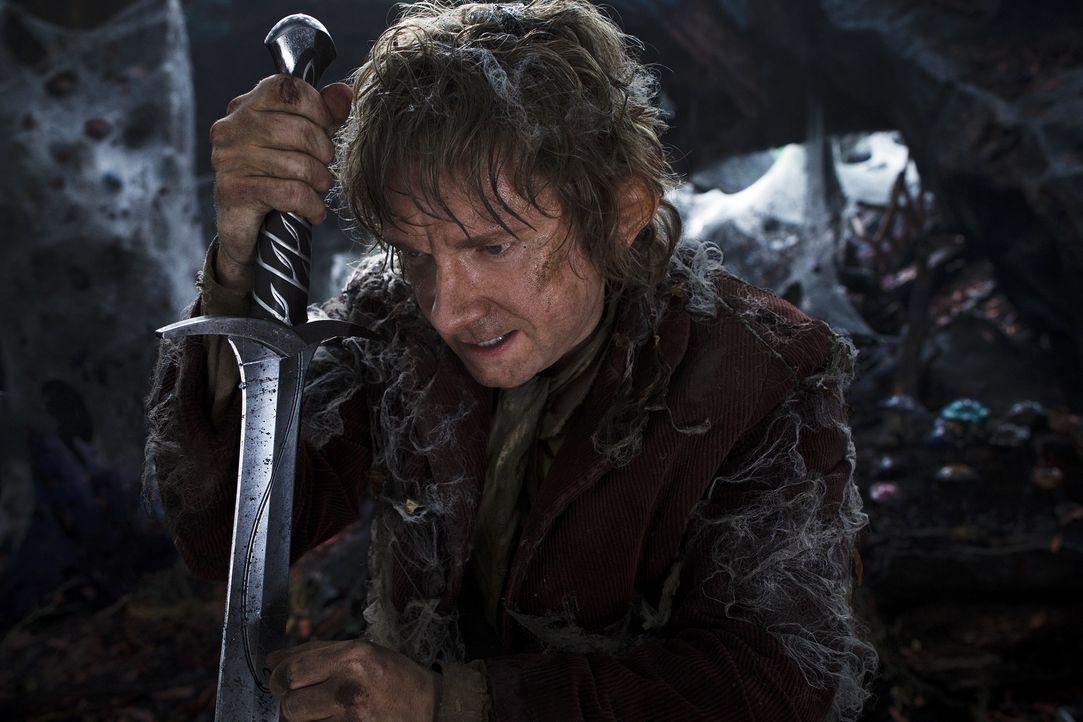 Auf der Suche nach dem bösen Drachen Smaug müssen Bilbo (Martin Freeman) und seine Gefährten den Düsterwald durchforsten. Dieser wimmelt nur so von... - Bildquelle: 2013 METRO-GOLDWYN-MAYER PICTURES INC. and WARNER BROS. ENTERTAINMENT INC.