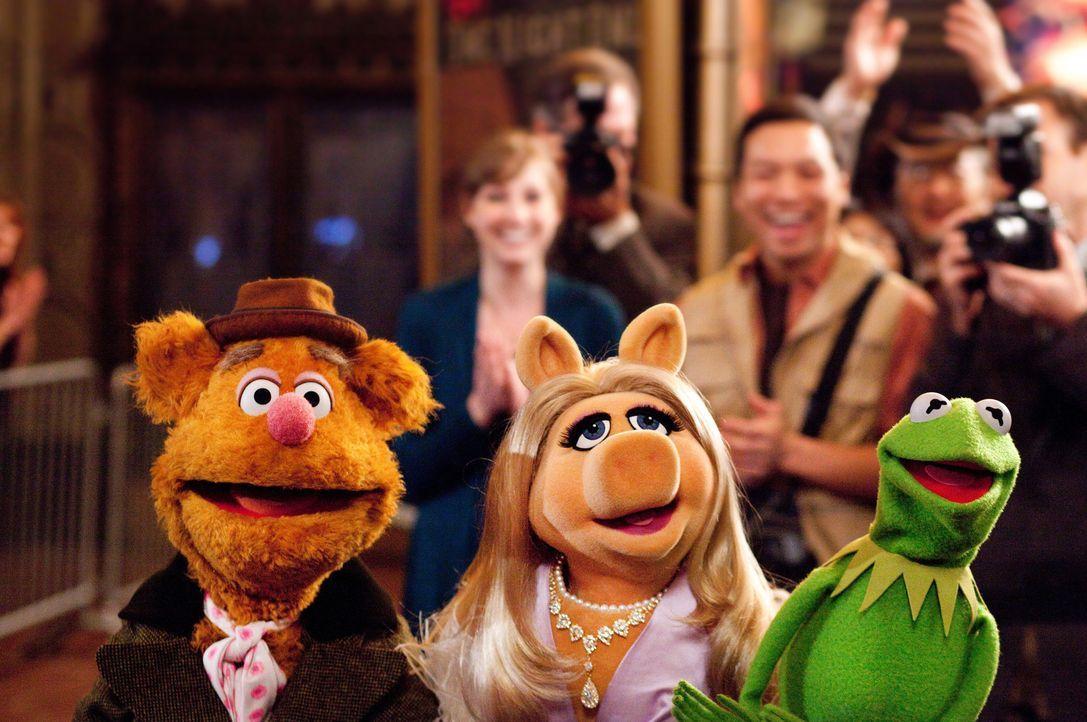Die Muppets-Show soll das Comeback des Jahres werden. Kermit, Fozzie Bär und Miss Piggy stellen Unglaubliches auf die Beine ... - Bildquelle: The Muppets Studio, LLC. All rights reserved