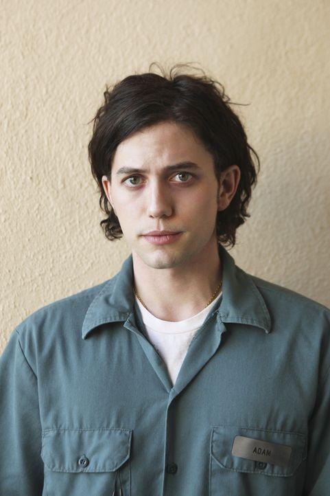 Hat Adam (Jackson Rathbone) etwas mit dem Mord an zwei Studenten zu tun? - Bildquelle: Touchstone Television