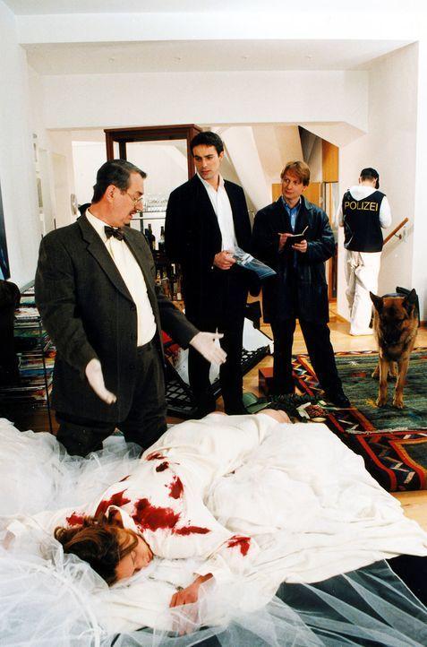 Ricarda Limmer (Katja Weitzenböck, vorne) wurde ermordet. Kommissar Brandtner (Gedeon Burkhard, M.), Christian Böck (Heinz Weixelbraun, r.) und Dr.... - Bildquelle: Ali Schafler Sat.1