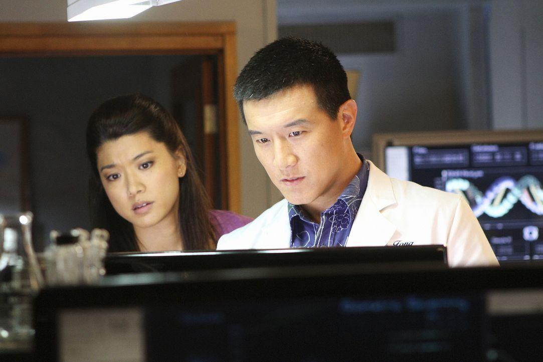 Die Ermittlungen laufen auf Hochtouren: Kono (Grace Park, l.) und Charlie Fong (Brian Yang, r.) ... - Bildquelle: 2011 CBS BROADCASTING INC.  All Rights Reserved.