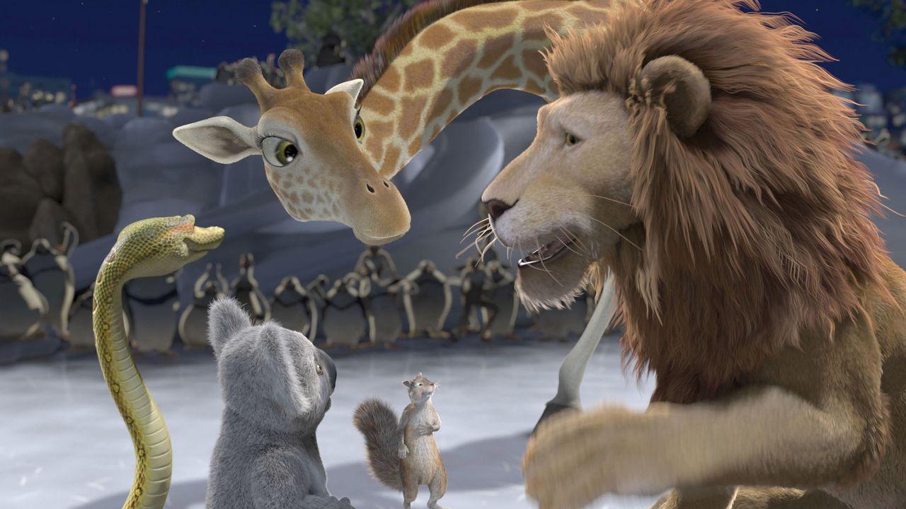 Auf der Suche nach dem Junglöwen Ryan, der sich auf in die Wildnis machte um das brüllen zu lernen, erleben Eichhörnchen Benny (2.v.r.), Koala Nigel... - Bildquelle: Disney Enterprises, Inc.  All rights reserved