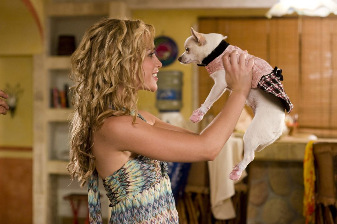 Die verwöhnte Chihuahua-Hündin Chloe (r.) geht während eines Urlaubs mit Rachel (Piper Perabo, l.) in Mexiko verloren. Ein großes Abenteuer begi... - Bildquelle: Disney Enterprises, Inc.  All rights reserved