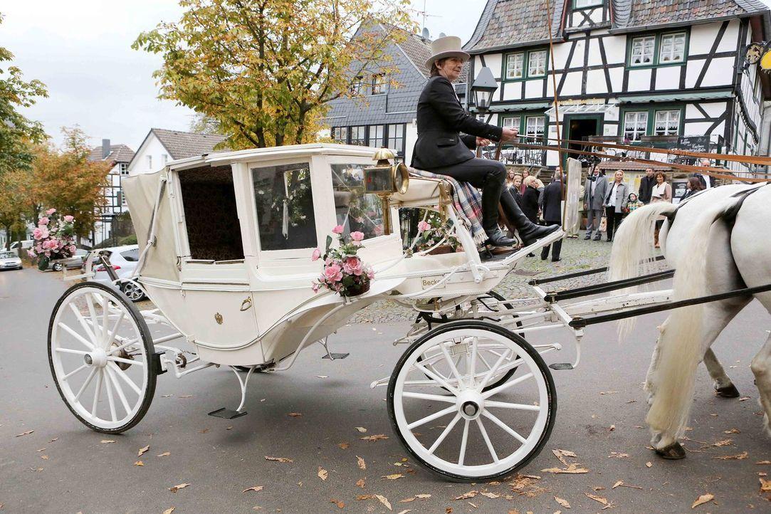 Genau wie früher: Kann Albert seiner Frau Veronika wirklich eine Hochzeit bieten, wie sie sie bereits vor Jahren erlebt haben? - Bildquelle: SAT.1