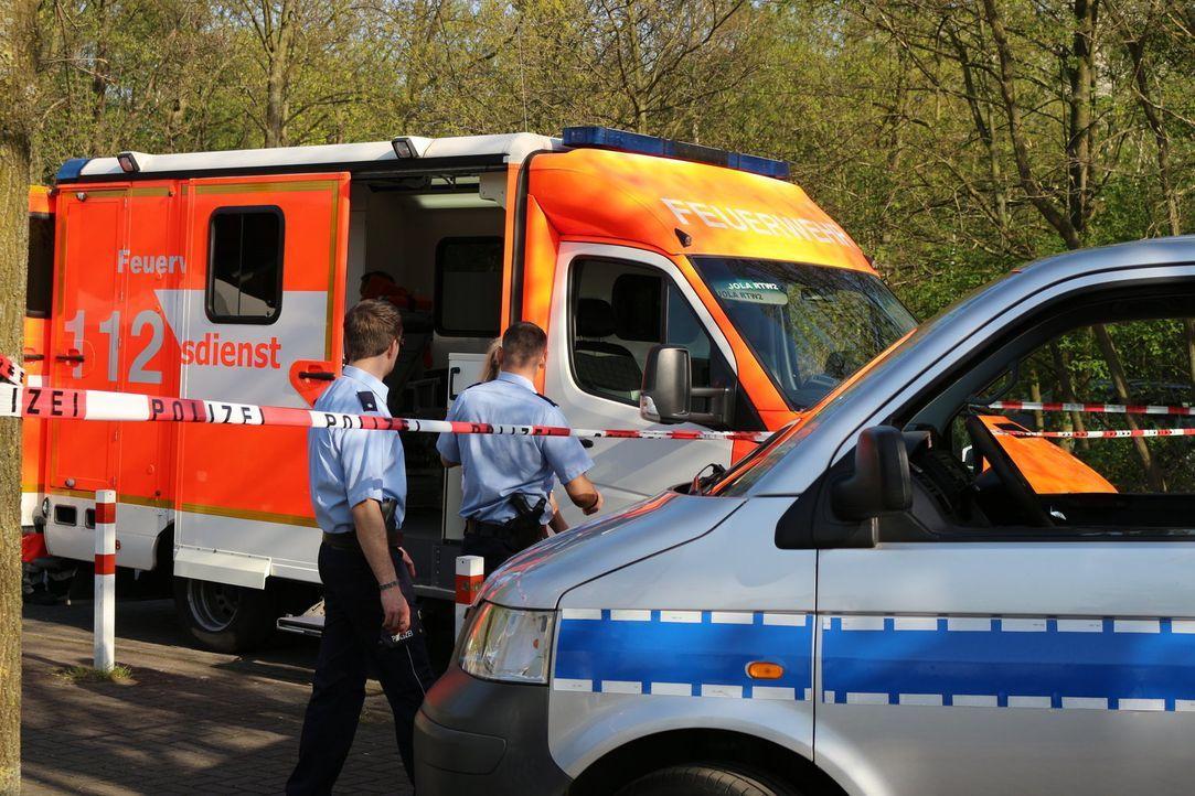 Mit kriminalistischer Intuition und strategisch cleveren Fragen locken die Duisburger Polizeikommissare Stephan Novel (r.) und Fabian Köster (l.) di... - Bildquelle: SAT.1