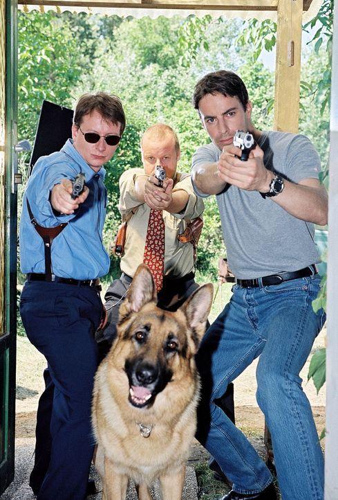 Kommissar Brandtner (Gedeon Burkhard, r.), Böck (Heinz Weixelbraun, l.), Kunz (Martin Weinek, M.) und Rex jagen den schizoiden Fred Kolar. - Bildquelle: Sat.1