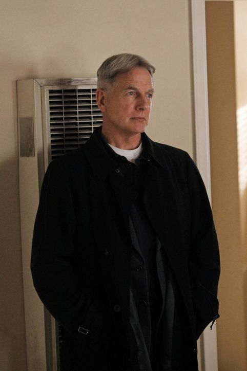 Gemeinsam mit seinem Kollegen untersucht Gibbs (Mark Harmon) eine Verbindung zwischen einem toten Journalisten und einem niederen Marineoffizier, w - Bildquelle: CBS Television