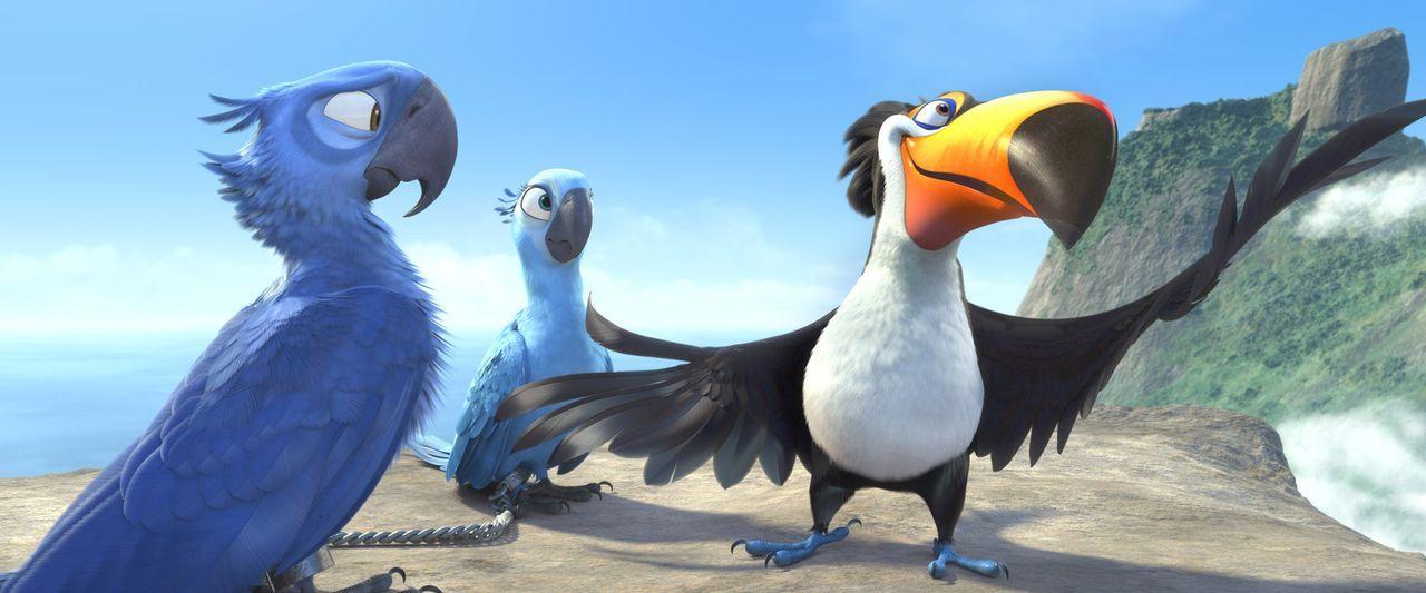 Blue (l.) und Jewel (M.) geraten von einer misslichen Lage in die nächste. Doch gemeinsam mit Rafael (r.) versuchen sie alles, um den Gefahren in R... - Bildquelle: Blue Sky Studios 2011 Twentieth Century Fox Film Corporation. All rights reserved.