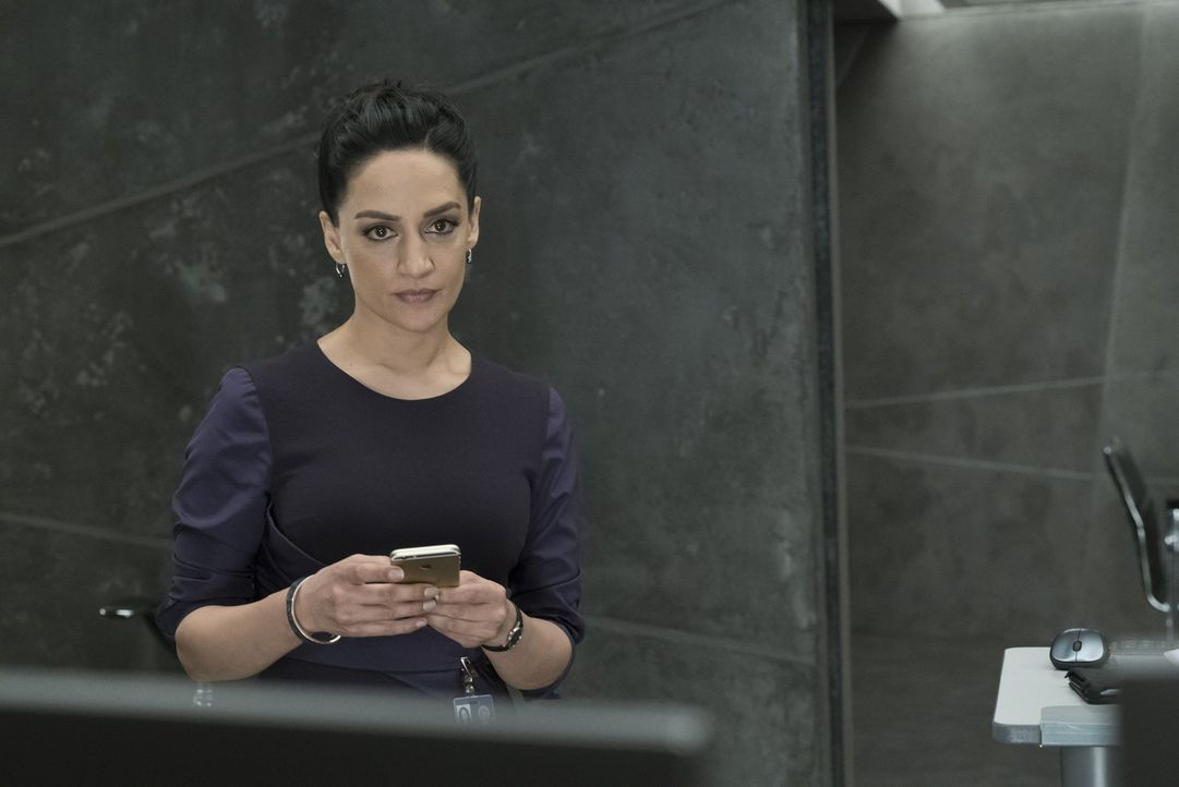 Auch NSA-Agentin Nas Kamal (Archie Panjabi) ahnt nicht, dass Shepherd ihr eine tödliche Falle stellen wird ... - Bildquelle: Warner Brothers