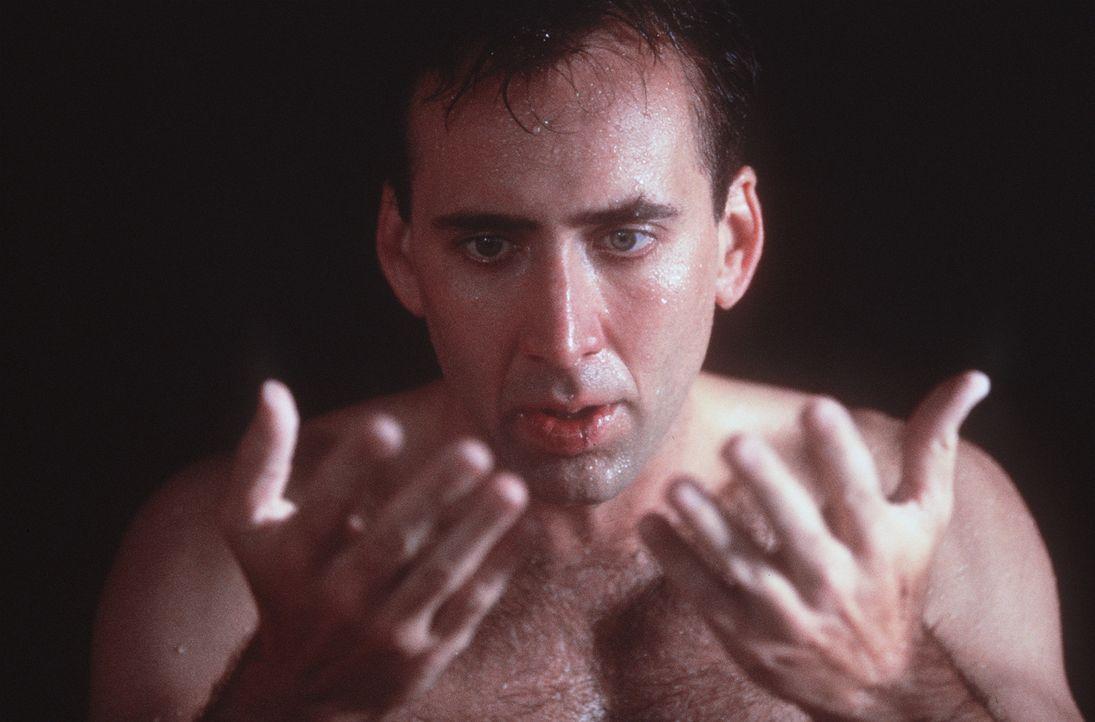 Der unsterbliche Engel Seth (Nicolas Cage) träumt davon, zu fühlen, zu berühren und zu lieben wie ein Mensch. Er verliebt sich in die sterbliche... - Bildquelle: Warner Bros.