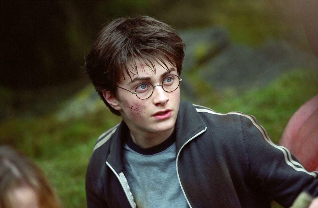 In Lebensgefahr: Harry Potter (Daniel Radcliffe) ... - Bildquelle: Warner Television