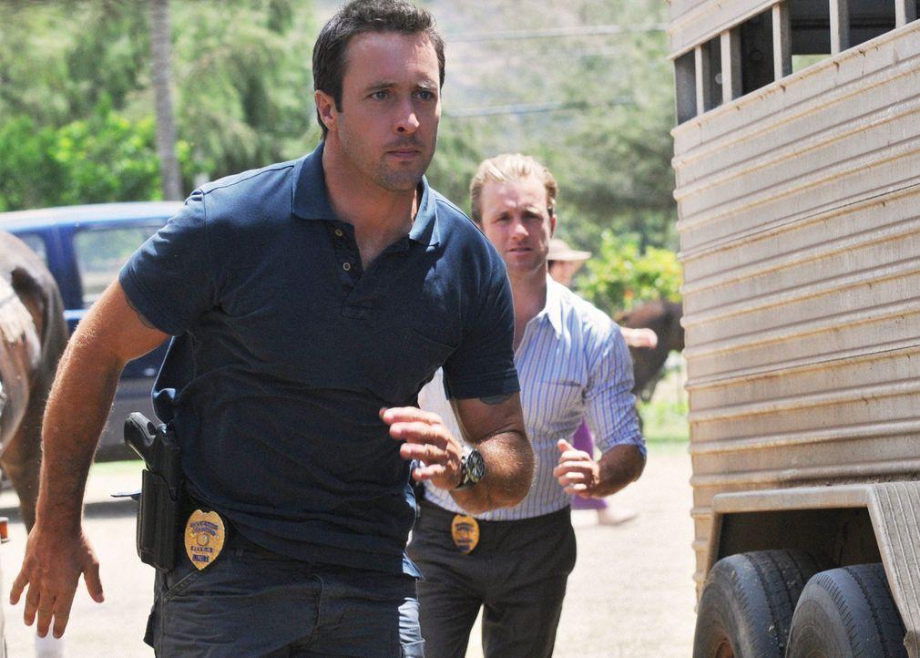 Untersuchen den Tod eines Polospielers: Steve (Alex O'Loughlin, l.) und Danny (Scott Caan, r.) ... - Bildquelle: 2012 CBS Broadcasting, Inc. All Rights Reserved.