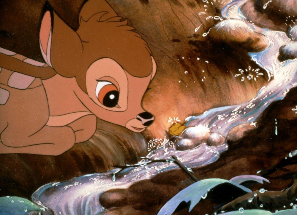 Die ganze Welt ist ein großer Abenteuerspielplatz: Auch der erste Frühling ist ein spannendes Erlebnis für den jungen Bambi ... - Bildquelle: Disney