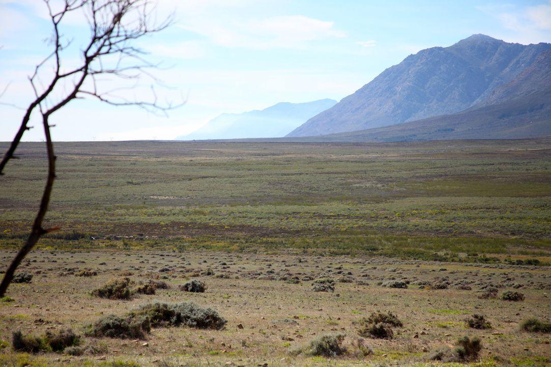 In einem wilden Land Hintergrund und Fakten12 - Bildquelle: Boris Guderjahn / SAT.1