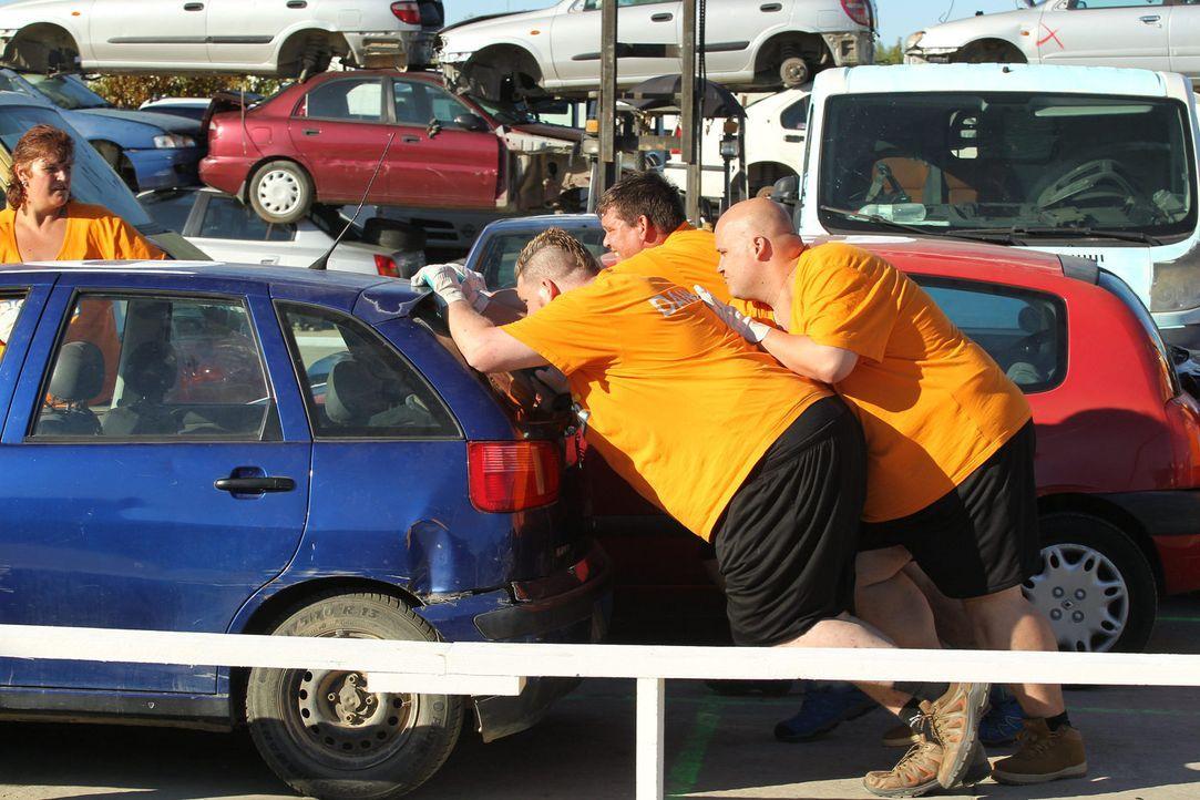 In zwei Challenges treten die Teams gegeneinander an, um Wellness-Minuten und Bonus-Kilos zu sammeln: Team Orange mit (v.l.n.r.) Daniel, Jan und Hen... - Bildquelle: SAT.1/Enrique Cano
