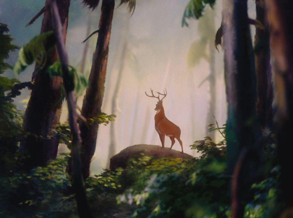 Der große Fürst des Waldes: Bambis Vater ... - Bildquelle: Disney