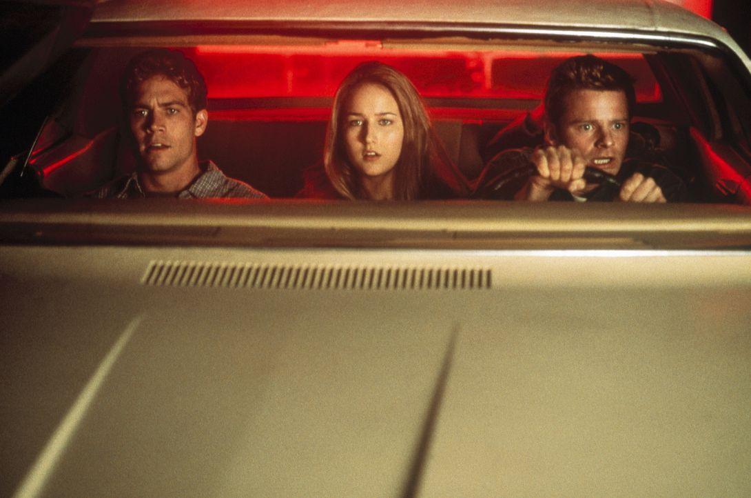 Auf dem Trip von Colorado nach New Jersey begehen die drei Freunde Fuller (Steve Zahn, r.), Lewis (Paul Walker, l.) und Venna (Leelee Sobieski, M.)... - Bildquelle: 20th Century Fox