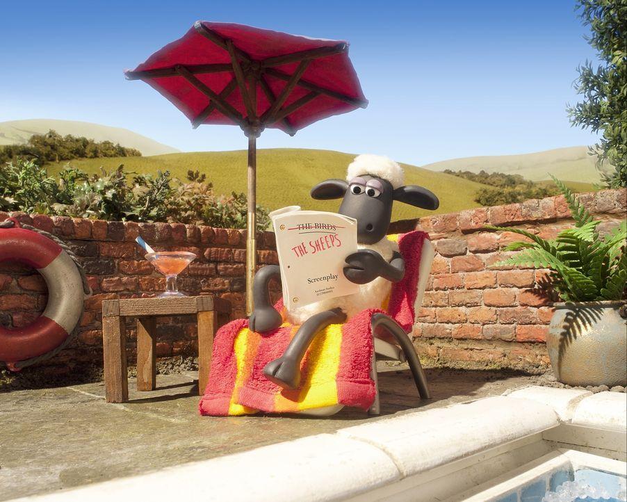 Nur einmal ein bisschen Ruhe und Entspannung, das wünscht sich Shaun (Bild) das Schaf. Doch als er einen Plan entwickelt, wie er den Bauern außer Ge... - Bildquelle: 2014 AARDMAN ANIMATIONS LIMITED AND STUDIOCANAL SA. A STUDIOCANAL RELEASE. ALL RIGHTS RESERVED.
