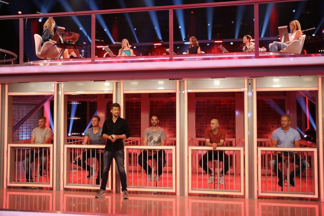 Annemarie Carpendale (oben l.) ist gespannt, wie die Frauen, (oben 2.v.l.n.r.) Mailin, Monika, Kathrin und Lisa setzen werden, wenn Wayne Carpendale... - Bildquelle: Guido Engels SAT.1