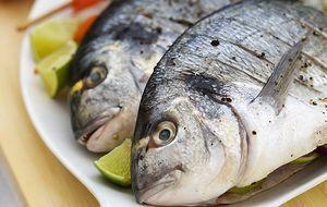 Ernährung Fisch