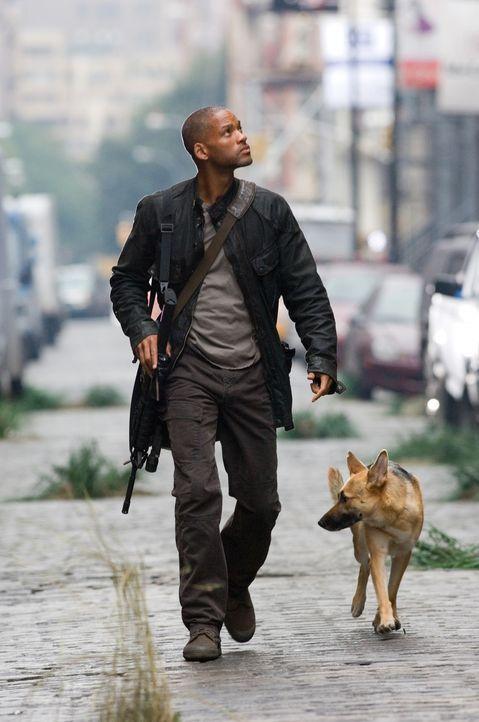 Ist der Letzte seiner Art: Robert Neville (Will Smith) ... - Bildquelle: Warner Brothers International