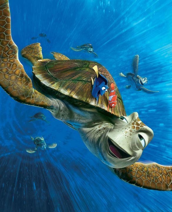 Niemandem bereitet es mehr Spaß mit der Meeresströmung zu treiben als der Schildkröte Crush. Dorie (l.) und Marlin (r.) lassen es sich nicht nehmen,... - Bildquelle: Walt Disney Pictures