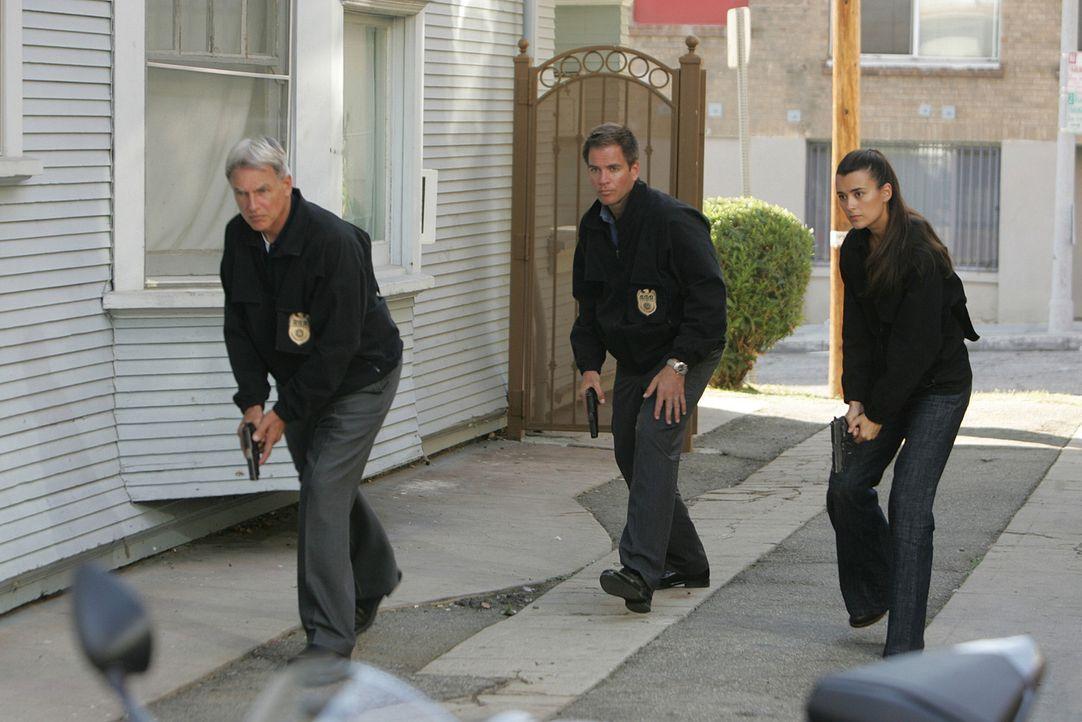 Sind auf einer heißen Spur: Gibbs (Mark Harmon, l.), Tony (Michael Weatherly, M.) und Ziva (Cote de Pablo, r.) ... - Bildquelle: CBS Television