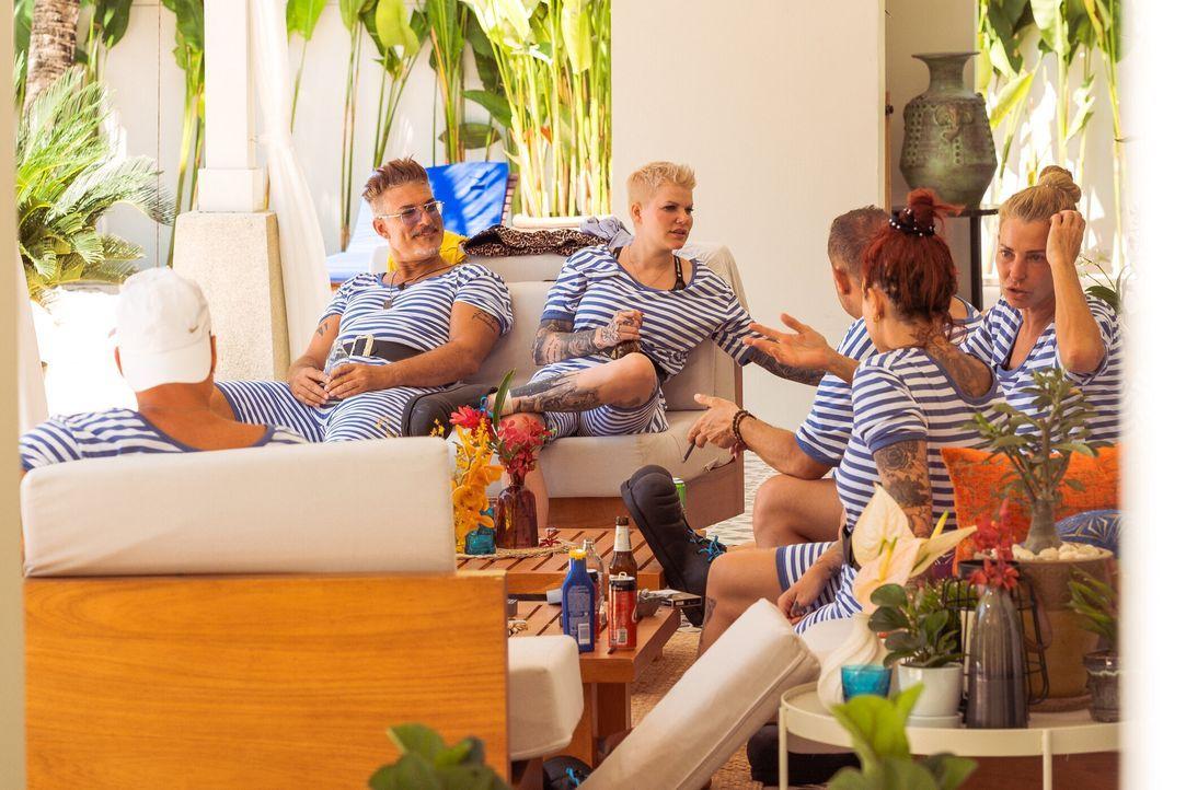 (v.l.n.r.) Chris Töpperwien; Melanie Müller; Willi Herren; Kate Merlan; Giulia Siegel - Bildquelle: SAT.1