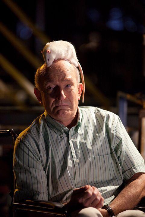 Auch Doc (Tom Thon) ist sich seines Lebens nicht mehr sicher, als auf dem Flug 318 plötzlich einer bizarren Seuche ausbricht ... - Bildquelle: 2011 Destination Films Distribution Company, Inc. All Rights Reserved.
