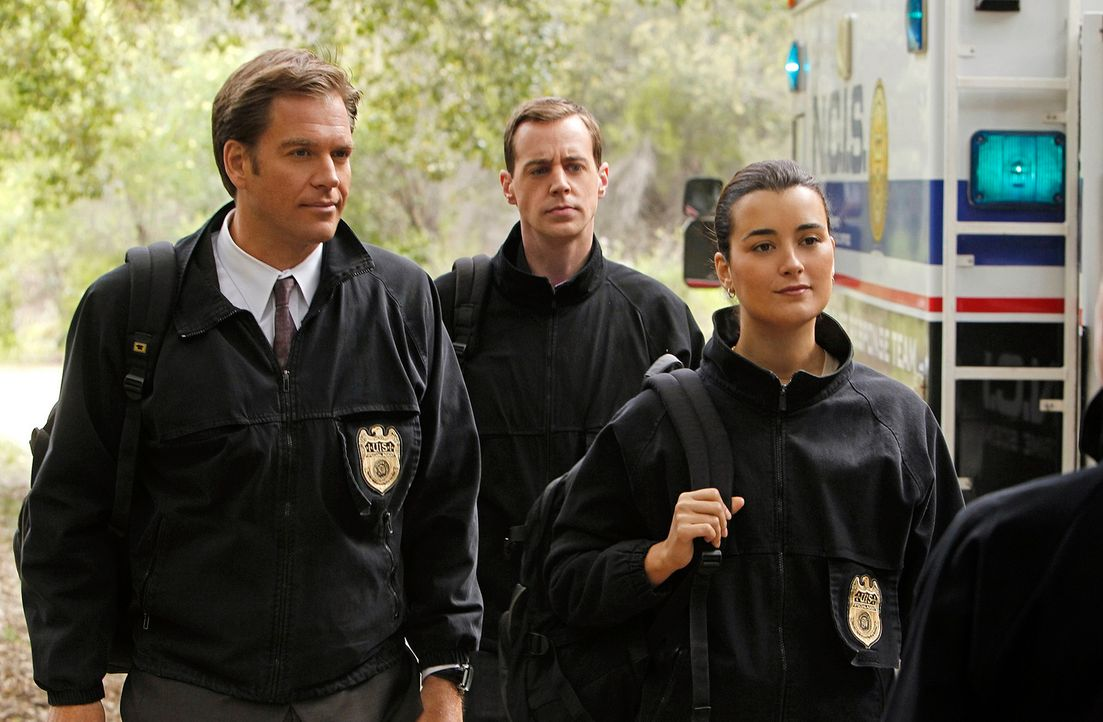 Auf der Suche nach dem Hafenmörder: Tony (Michael Weatherly, l.), McGee (Sean Murray, M.) und Ziva (Cote de Pablo, r.) ... - Bildquelle: CBS Television