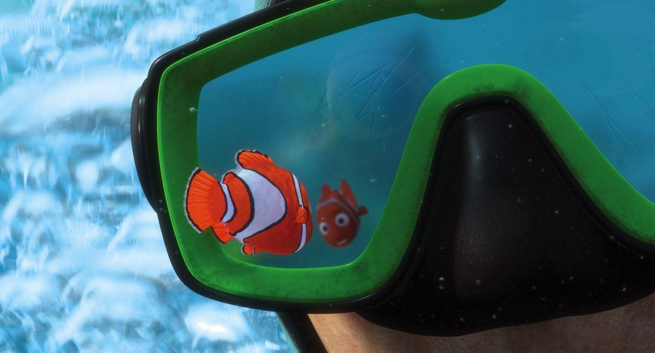 Obwohl es sein Vater ausdrücklich verboten hat, schwimmt Nemo über das Riff hinaus ? er will beweisen, dass er trotz seiner zu klein geratenen Floss... - Bildquelle: Walt Disney Pictures