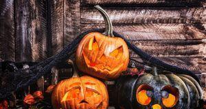 Wenn Sie Halloween-Deko selber machen, darf ein Kürbisgesicht nicht fehlen. W...