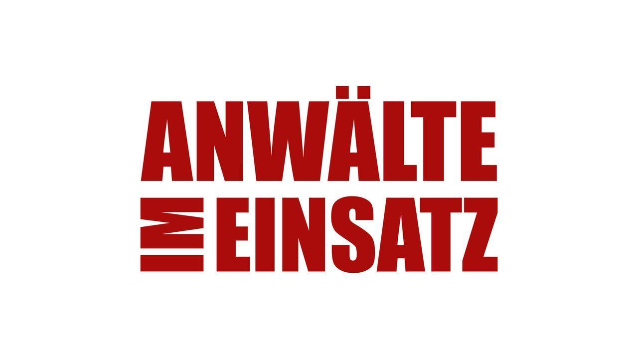 Anwälte im Einsatz - Logo - Bildquelle: SAT.1