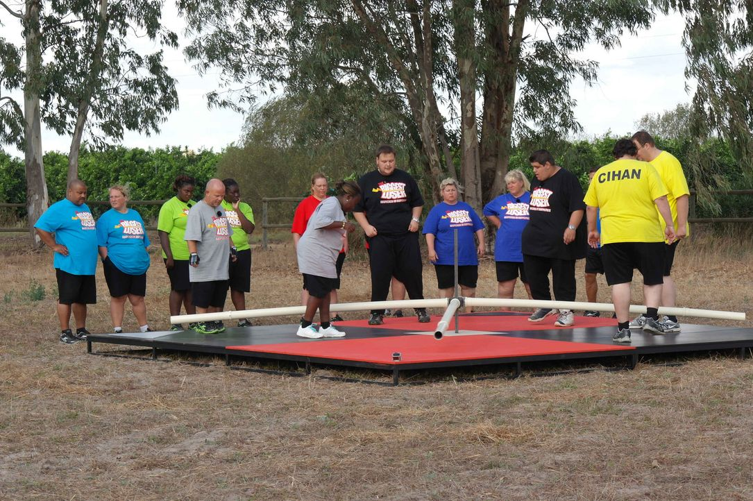 Zwischen den Kandidaten entbrennt ein Wettkampf um das Gewicht. Die Gewinner der Wettkämpfe dürfen sich über Bonuskilo freuen, während die Verli... - Bildquelle: SAT.1